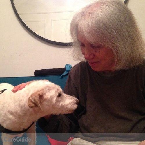 Pet Care Provider Ann Savastano's Profile Picture