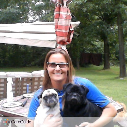 Pet Care Provider Radki Navratilova's Profile Picture