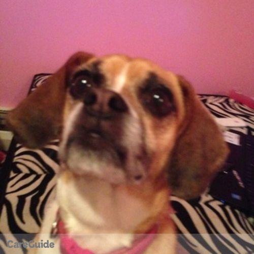 Pet Care Job Angelica B's Profile Picture