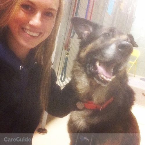 Pet Care Provider Megan Ball's Profile Picture