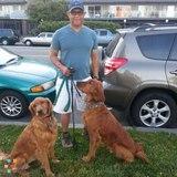 Dog Walker, Pet Sitter, Kennel in Oakland