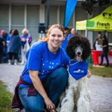 Searching for Kitchener Dog Sitter Jobs