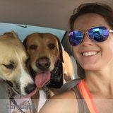 Dog Walker, Pet Sitter in Chandler