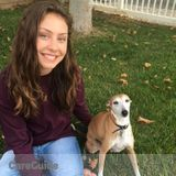 Dog Walker, Pet Sitter in Simi Valley