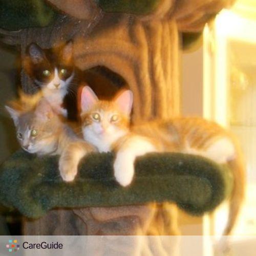 Pet Care Provider Elijah Anderson's Profile Picture