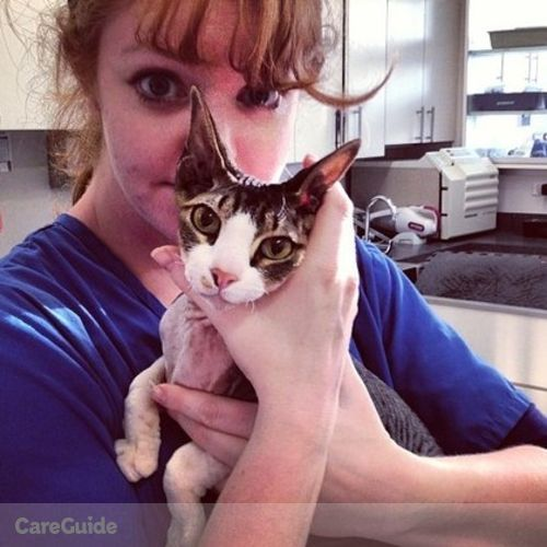 Pet Care Provider Carmela French's Profile Picture
