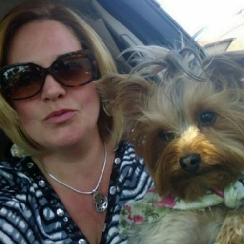 House Sitter Provider Trina F's Profile Picture