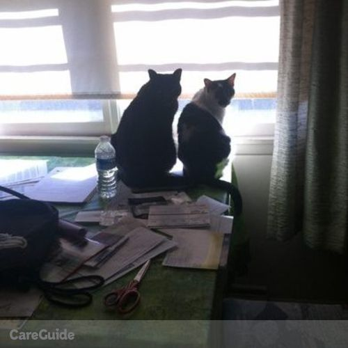 Pet Care Job Katarrinna Gause's Profile Picture