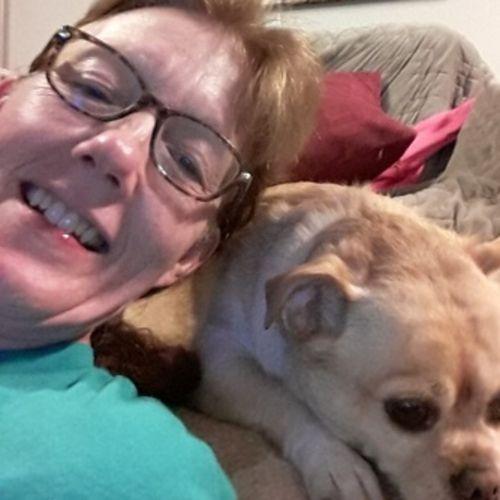 Pet Care Provider Sherry W's Profile Picture