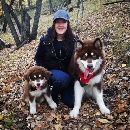 Pet Care Provider Kristine M's Profile Picture