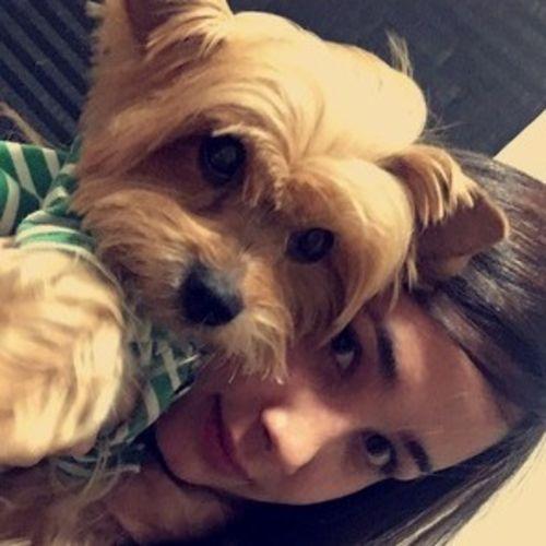Pet Care Provider Maria Oropeza's Profile Picture