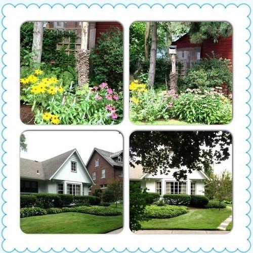 Gardener Provider Danielle E Gallery Image 3