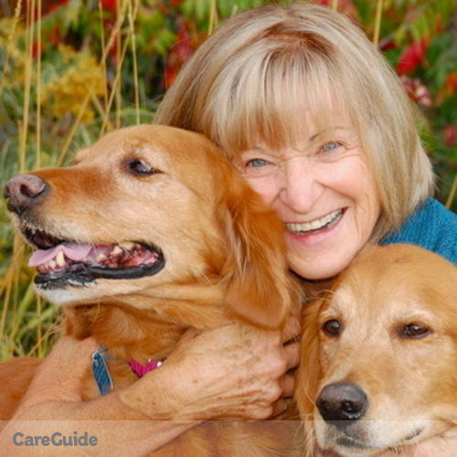 Pet Care Provider Jeanette M's Profile Picture