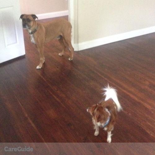 Pet Care Job Gillian Columbus's Profile Picture