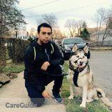 Dog Walker, Pet Sitter in Yonkers