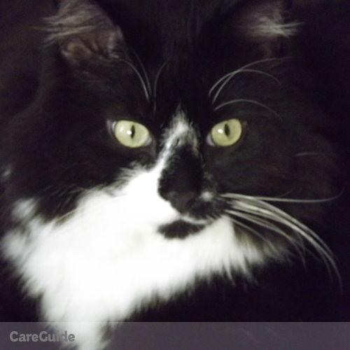 Pet Care Provider Richmond Killough's Profile Picture