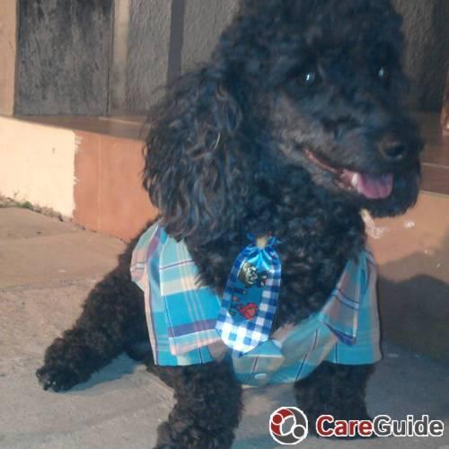 Pet Care Provider Leonard L's Profile Picture