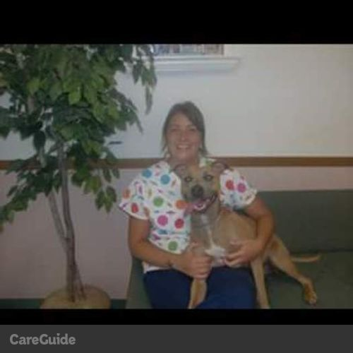 Pet Care Provider Heather Boehm's Profile Picture