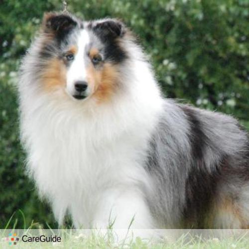 Pet Care Job Barbara Isman's Profile Picture