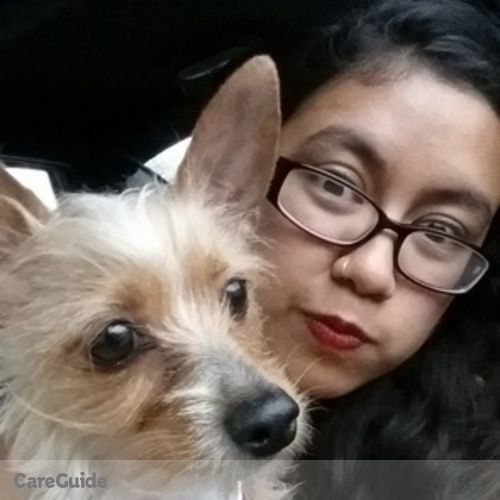 Pet Care Provider Ofelia Sanchez's Profile Picture