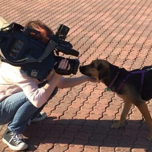 Videographer Provider Melissa C's Profile Picture