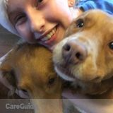 Dog Walker, Pet Sitter in Winchester