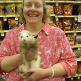 Pet Care Provider in Braidwood