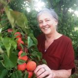 We are a healthy gardener retired couple looking For a House and Pet Sitter Job in British Columbia