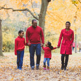 A kind and organized caregiver needed in North Toronto