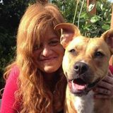 Reliable Housesitter in Crescent City