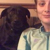 Hi! I am lacie Wood. I am offering Professional animal sitting for Your Home.