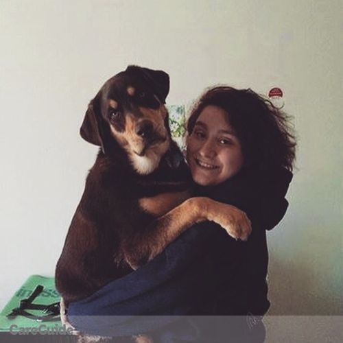 Pet Care Provider Elif Dila Yavasir's Profile Picture