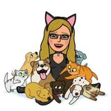 Cat care in your Home in Daytona Beach, Florida. Several References