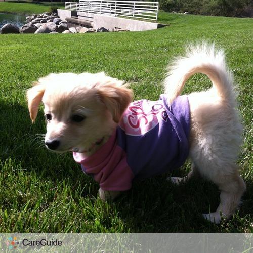Pet Care Job Elena Hernandez's Profile Picture