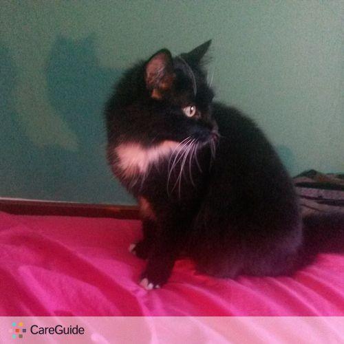 Pet Care Provider Lori Summers's Profile Picture