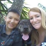 Dog Walker, Pet Sitter, Kennel in Dunedin