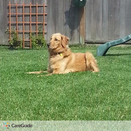 Pet Care Provider Michal Wiseman's Profile Picture