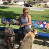 Hard Working Dog Walker and Pet Sitter in the Simi Valley area.