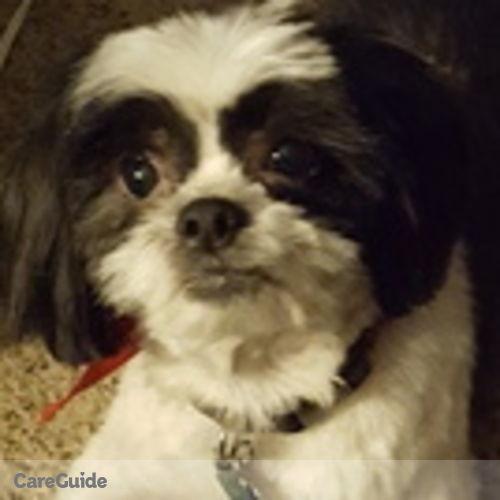 Pet Care Job Faith Bryan's Profile Picture