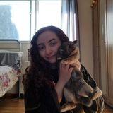 Pet sitter in Edmonton, Ab :)