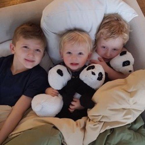 Canadian Nanny Job Fun Loving Family 's Profile Picture