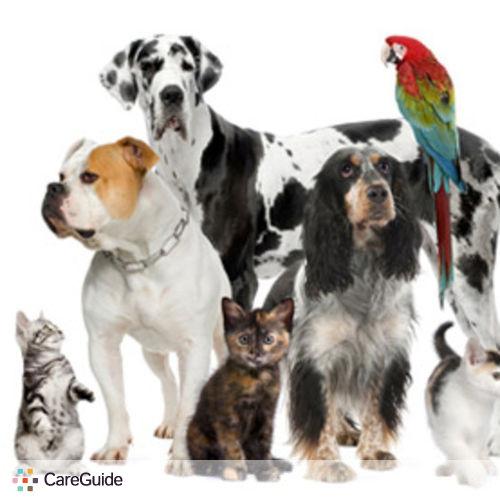 Pet Care Provider Rhonda A's Profile Picture
