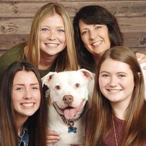 Pet Care Provider Kristine T's Profile Picture