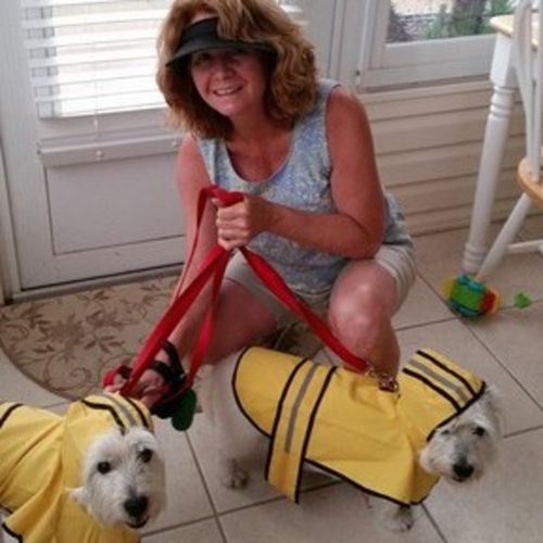 Pet Care Provider Lesley I's Profile Picture