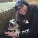 For Hire: Dog Walker/Pet Sitter in Bernardsville, New Jersey