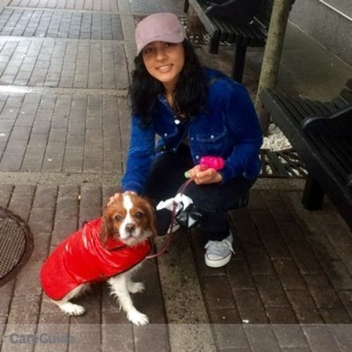 Pet Care Provider Puja Negi's Profile Picture