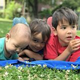 Seeking wonderful part-time nanny in the Junction neighbourhood in Toronto for three boys (18 months, 4 years, 6 years)