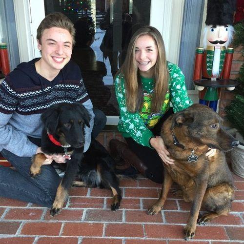 Pet Care Provider Rachel Jansen Gallery Image 3