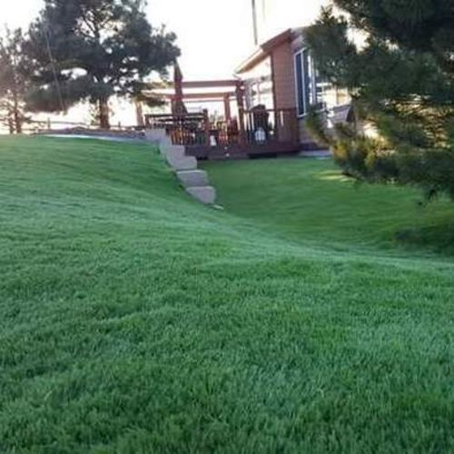 Angelo's Landscaping builds your dream yard you want. Specialized in turf.