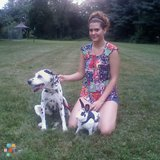 Dog Walker, Pet Sitter in Perry Hall